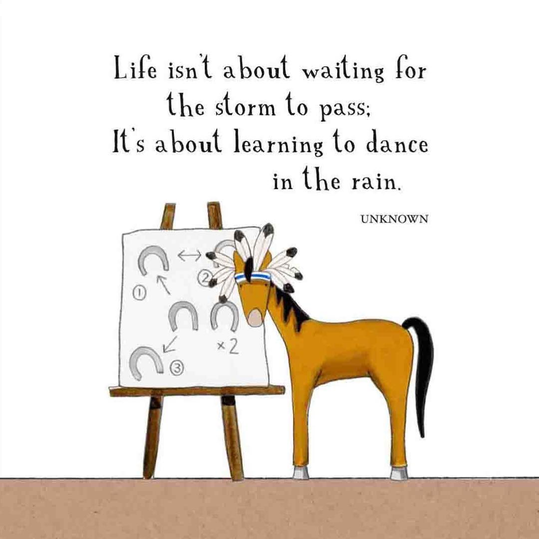 "Red Tractor Designs cartoon of a horse in front of a set of dance instructions with the caption ""Life isn't about waiting for the storm to pass; It's about learning to dance in the rain."